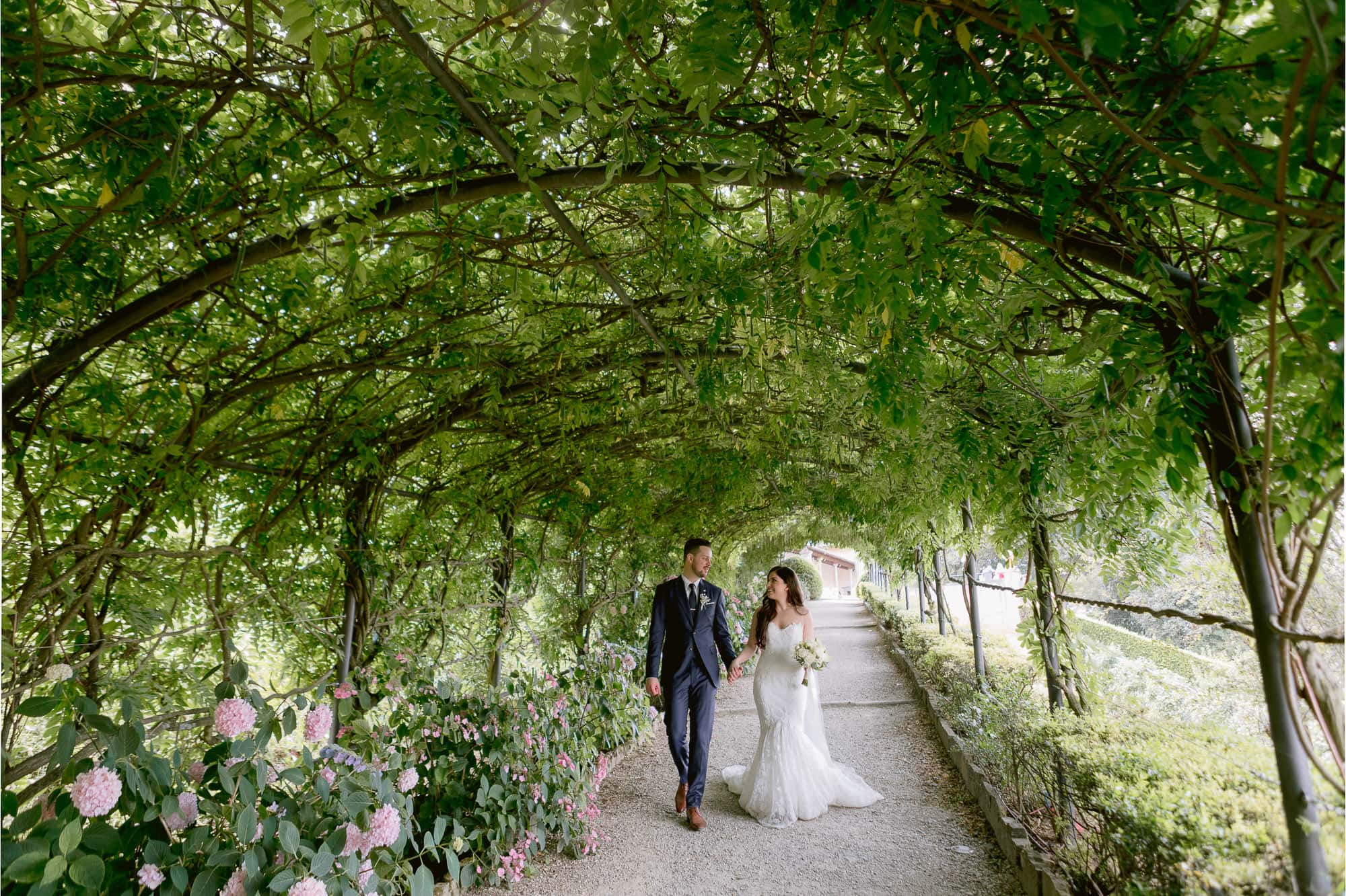newlyweds walk in a wisteria tunnel in florence